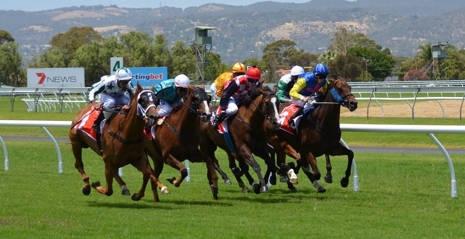 sports-betting-racetrack